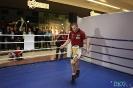 Otwarty trening  przed galą Wojak Boxing Night 29.05.2014 Lublin_31