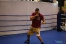 Otwarty trening  przed galą Wojak Boxing Night 29.05.2014 Lublin_38
