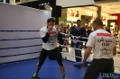 Otwarty trening  przed galą Wojak Boxing Night 29.05.2014 Lublin_54