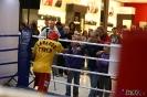 Otwarty trening  przed galą Wojak Boxing Night 29.05.2014 Lublin_7